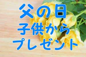 28953748410ec14fbaccb575cd0a3319_s232